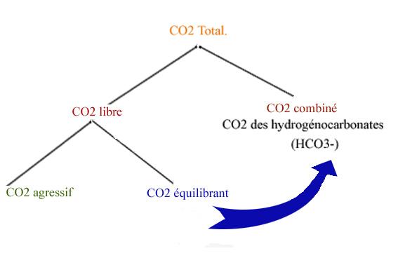 Gaz carbonique dans l'eau.jpg