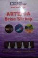 Artemias.jpg