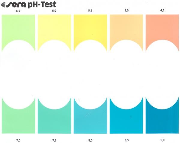 PH-Test.jpg